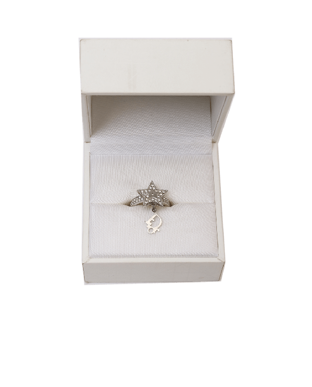 Christian Dior star design D charm silver ring